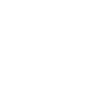 The Dive Team
